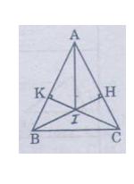 Giải Toán lớp 7 Bài 8: Các trường hợp bằng nhau của tam giác vuông