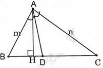 giai toan lop 8 bai 3 tinh chat duong phan giac cua tam giac 2 - Giải Toán lớp 8 Bài 3: Tính chất đường phân giác của tam giác