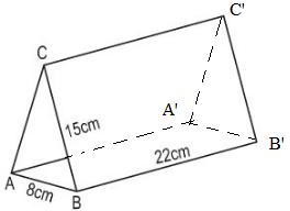 Giải Toán lớp 8 Bài 5: Diện tích xung quanh của hình lăng trụ đứng