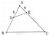Giải Toán lớp 8 Bài 7: Trường hợp đồng dạng thứ ba