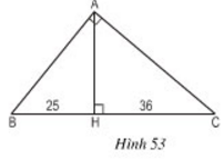 giai toan lop 8 bai 8 cac truong hop dong dang cua tam giac vuong 10 - Giải Toán lớp 8 Bài 8: Các trường hợp đồng dạng của tam giác vuông