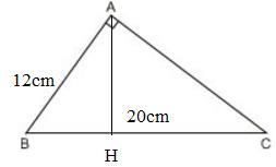giai toan lop 8 bai 8 cac truong hop dong dang cua tam giac vuong 12 - Giải Toán lớp 8 Bài 8: Các trường hợp đồng dạng của tam giác vuông